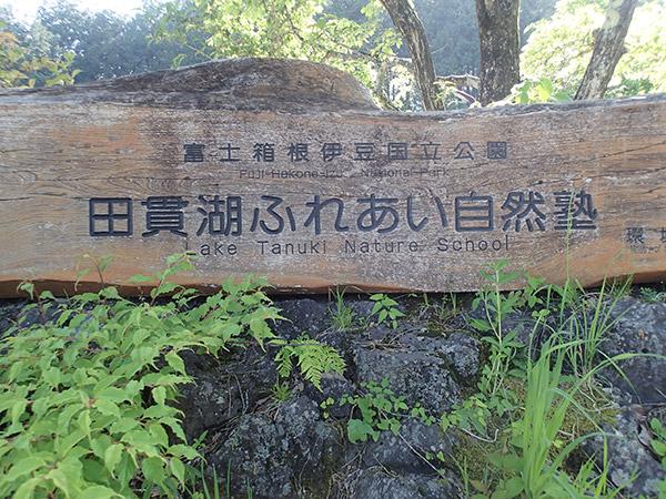 田貫湖ふれあい自然館